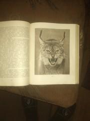 книга Московский зоопарк 1949г тираж 10 000